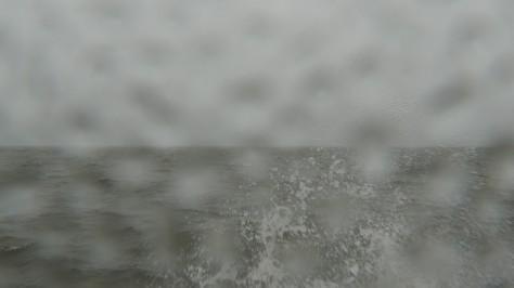 videostilli-Harakka-12-4-P1000549