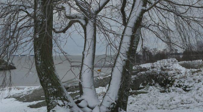 Snö och vinterkyla blev storm och regn
