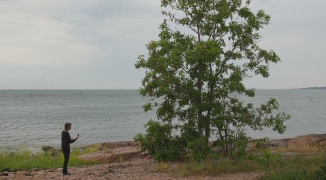 With An ash tree in Eckerö